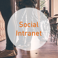 Office 365_Social Intranet